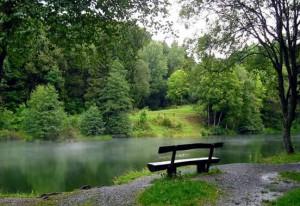 Imagem de rio com banco de madeira na margem