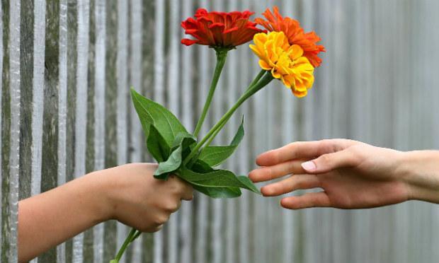 Imagem de pessoa dando flores a outra pessoa (Foto ilustrativa: Pixabay)